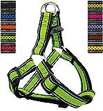 DDOXX Hundegeschirr Reflektierend Step-In Air Mesh | für große, mittelgroße, Mittlere & Kleine Hunde | Geschirr Hund | Katze | Brustgeschirr | Softgeschirr | Grün, L - 3,2 x 65-99 cm