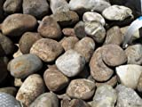 25 kg Flußkiesel Kiesel 8 - 20 cm - Kieselsteine