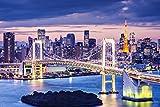 Tokio Stadt Skyline Brücke Japan XXL Wandbild Kunstdruck