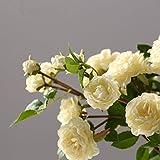 Miguor Artificielle Décoration 4têtes Roses Blanches 56,9cm Branche Chiffon de...