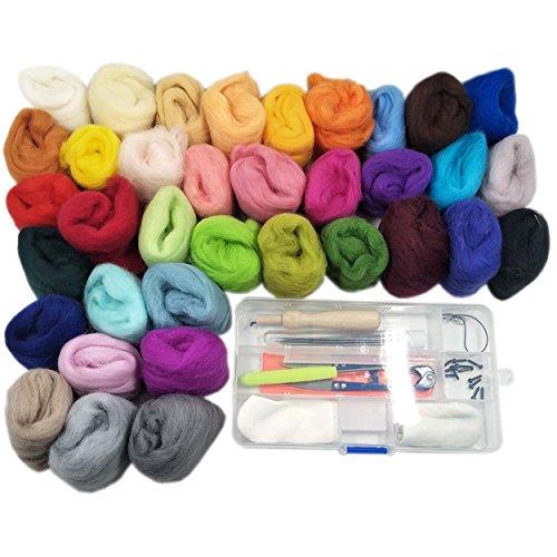 36 Farben Filzwolle Set mit Trockenfilzen Nähset Märchenwolle Filznadeln Werkzeug Starter Kit für Nadel Filz DIY Handwerk (Leder Augen Schwarz)