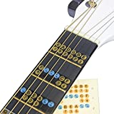 Guitare Échelle Autocollant Guitare Palissandre Notes carte étiquettes Fret Autocollant Stickers pour débutant