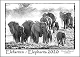 ELEPHANTS 2020 - ELEFANTEN 2020 Calendar (A3 format): Black & White Calendar of Africa's Magnificent Elephants