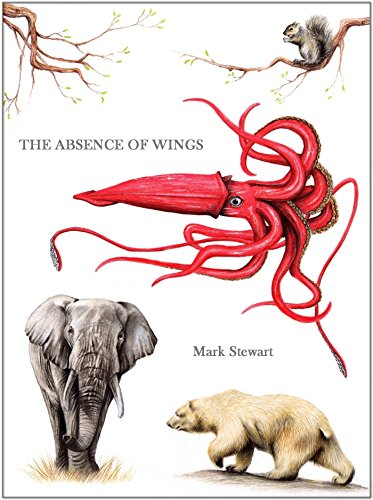 The Absence of Wings by [Stewart, Mark]