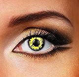 Funky Vision Kontaktlinsen - 12 Monatslinsen, Yellow WereWolf, Ohne Sehstärke, 1 Stück