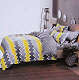 Magnetic Shadow King Size AC Comforter Set Duvet Set with Bedsheet