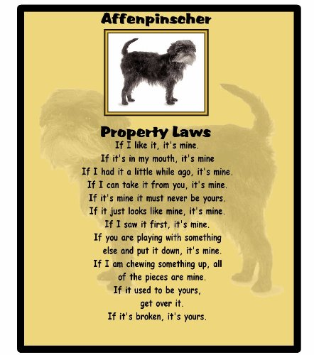 Affenpinscher – Property Laws – Mouse mat