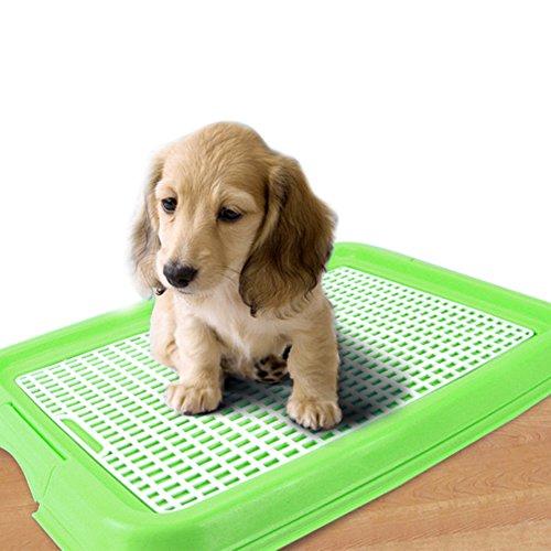 Pet coperta Bagno Kwock® Mesh Potty Training