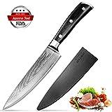 SKY LIGHT Damastmesser Kochmesser, Damaskus Küchenmesser 67-Schicht Hand...