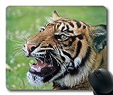Alfombrillas de ráton del Estampado de Animales, Gato Grande felino Animal, cojín de ratón del Tanque del Tigre