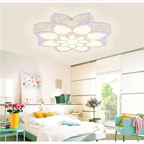 Ferro Lotus acrilico soffitto circolare moderno moda minimalista potere creativo