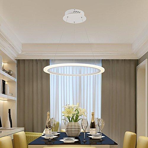 Wanson European Kronleuchter Schlafzimmer Restaurant Pendelleuchte LED Ringel Licht Acryl Creative Lichtarmaturen Durchmesser 30Cm Weiß Ring Energiesparlampe (Rustikale Geweih Deckenventilator)