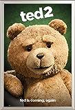 empireposter Ted - 2 - Close Up - Komödie Film - Poster Plakat Druck - Größe 61x91,5 cm + Wechselrahmen, Shinsuke® Maxi Aluminium Silber, Acryl-Scheibe