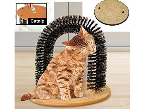 Cat Kitten Massaging Scratching Self Grooming scratch post