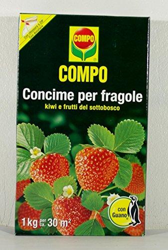 compo-fresas-compo-fertilizante-granular