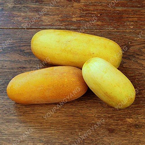 200 pcs Très rare concombre noir JAPONAIS concombre Semences potagères Semences pour la maison Graines Légumes Pour jardin Semer concombre