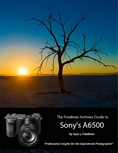 The Friedman Archives Guide to Sony's A6500 - Professional Insights for the Experienced Photographer (English Edition)