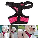 ILOVEDIY Poppypet Softgeschirr für Kleine Hunde, Hunde Brustgeschirr Zum Joggen, Flexible Hundeleine Jogginggürtel Hund Pink