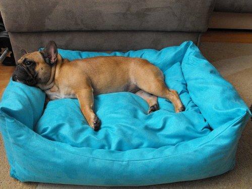 Hundebett+Hundekissen Hundesofa Hundekorb Tierbett Verschiedene Größen und Farben (Größe 3 -  80cm x 60cm x 25cm, türkis)