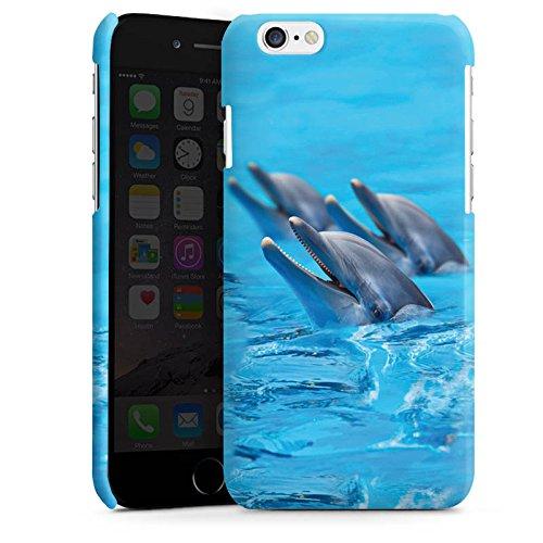 Apple iPhone 5s Housse étui coque protection Dauphin Dauphins Dauphins Cas Premium brillant