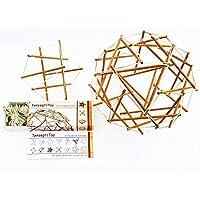 TensegriToy - Konstruktionsbausatz nach Buckminster Fuller - Tensegrity