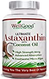 WellGood - In Nature We Trust - Astaxantina naturale, 90 pastiglie da 30 mg, contiene olio di noce di cocco, ottimo integratore che aumenta la resistenza, potente antiossidante naturale veg friendly