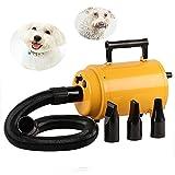 Hundefön Hundetrockner Pet Trockner Tierfön Pet Dryer Hundepflege Haartrockner Haustier Pflege für Hunde (Gelb 2800W)