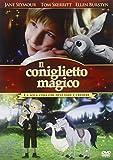 Un Coniglio Speciale (DVD)