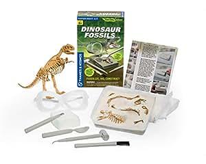 Thames & Kosmos Dinosaur Fossils