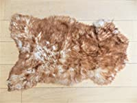 "Genuine Single Natural Tipped Single Sheepskin Rug (95x65cm) (38""x26"") by Rughouse"