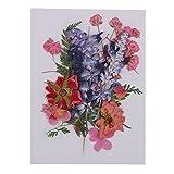 D DOLITY Flores Prensadas de Bricolaje Puede Usar para Fabricación de Papel de Arte - Multi,# 2 1-2.8cm