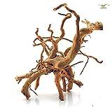 Spiderwood - Gr. S - L, Größe - S(20-30) M(30-50) L(50-70):L - 50-70 cm