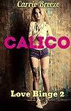 Calico (Love Binge Book 2) (English Edition)