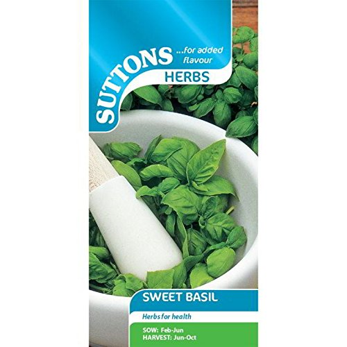 Suttons - Herb Seed - Basil Sweet
