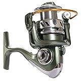 AUMING Carrete de Pesca Spinning Carrete de Doble Carpa Carrete de Pesca Carrete de Metal Lleno Copa de Freno Rueda Delantera y Trasera Rueda de Pesca (Size : 3000)