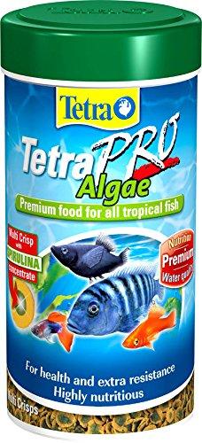 tetra-pro-algae-95g-500ml