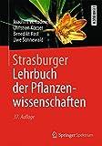 Strasburger - Lehrbuch der Pflanzenwissenschaften - E. Strasburger