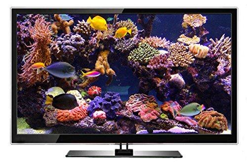 Aquarium DVD | TROPISCHES RIFF mit 4K ULTRA HD Download mit Natürlichen Geräuschen und Entspannender Musik - 2