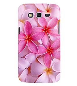 ifasho Designer Back Case Cover for Samsung Galaxy Grand Neo Plus I9060I :: Samsung Galaxy Grand Neo+ (Champa Bombay India Bengaluru)