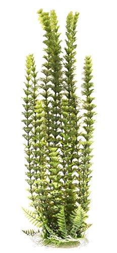Pistachio Pet hoch Schöne Realistische Aquarium Pflanze mit base16-43,2cm/41-43cm hoch - Aquarium Pflanzen Realistische