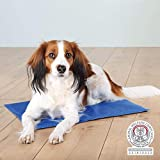 Kühlmatte für Hunde, 90 × 50 cm, blau - 2