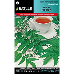Semillas Batlle 097340BOLS - Valeriana