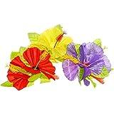 Fleur Hawaï montée sur clip