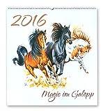 Kalender - MAGIE IM GALOPP 2016 - Sandra Mahn Pferdekalender Wandkalender Pferde Aquarell
