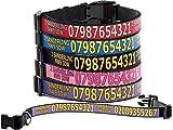 Personalisiertes Hundehalsband mit Telefon, Adresse oder jeder Text