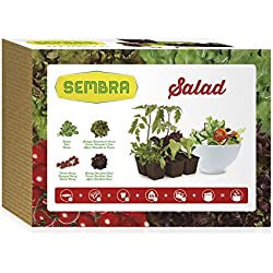 Sembra Salad - Kit de cultivo