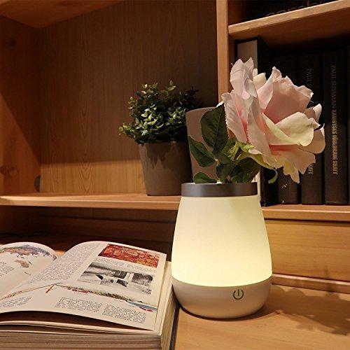 Vaso Luminoso Ohuhu® a LED - Lampada Decorativa - Gradevole Luce Notturna per il Salotto e la Camera da Letto