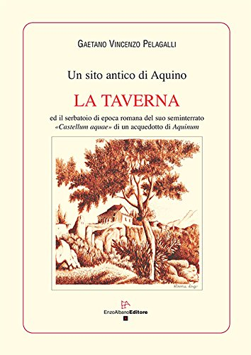 un-sito-antico-di-aquino-la-taverna-ed-il-serbatoio-di-epoca-romana-del-suo-seminterrato-castellum-a