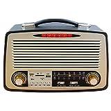 #6: Noizzy Box Retro-XL Vintage Style Speaker with Mp3/Mp4/FM/Bluetooth/Aux/TF Card/DSP Radio/USB (Black)