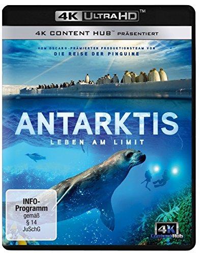 Antarktis - Leben am Limit (4K Ultra HD) [Blu-ray]